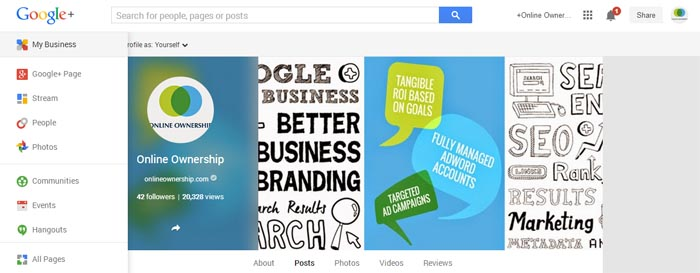 Google+ Insights for Pages