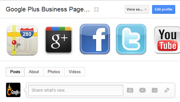 Google Plus for Business Profile