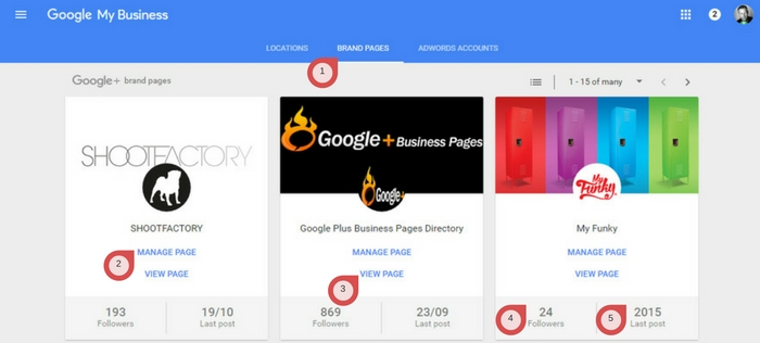 Brand Page Google My Business Dashboard
