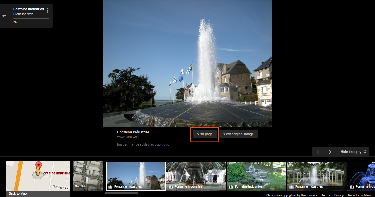 Web Page Image in Google Maps